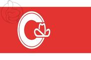 Bandera de Calgary