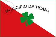 Bandera de Tibaná