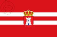 Bandera de Torreblascopedro