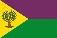 Bandera de Recas