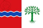 Bandiera di Fuentelencina