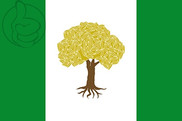 Bandera de Olivares de Júcar