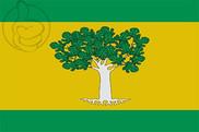 Bandera de Higueras