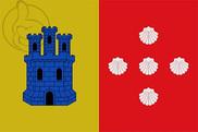 Bandera de Zarra