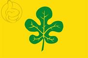 Bandera de Figuerola del Camp