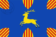 Flag of Cerveruela