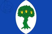 Bandera de Encinacorba