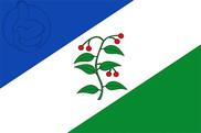 Bandeira do Arbúcies