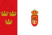 Bandera de Diego del Carpio