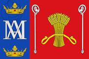 Bandera de Mesegar de Corneja