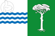 Bandera de Pedro Rodríguez