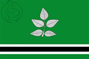 Bandera de Vidrà