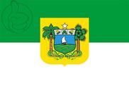 Bandera de Rio Grande del Norte