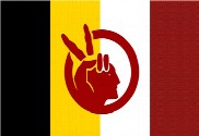 Bandeira do American Indian Movement