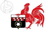Bandera de Charleroi