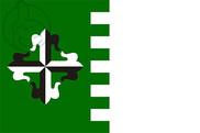 Bandera de Guaynabo