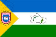 Bandera de Matagalpa