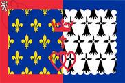 Bandera de Países del Loira