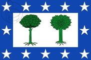 Bandera de Valdesimonte
