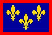 Bandera de Anjou