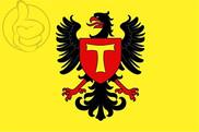 Bandera de Toul