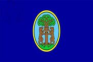 Bandera de Vrsara