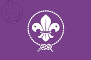 Flag of Scouts