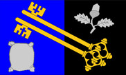 Flag of Surrey
