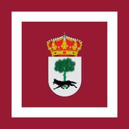 Bandera de Muñico