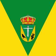 Bandera de San Vicente de Arévalo