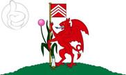 Bandiera di Cardiff