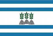Bandeira do Ortigueira