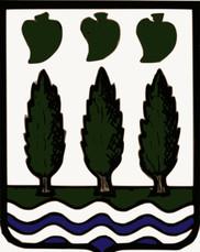 Bandera de Lezo