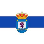 Bandera de Sariegos