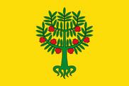 Bandeira do Granyena de les Garrigues