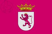 Bandiera di Leonesismo
