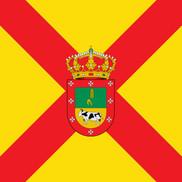 Bandera de Paradinas de San Juan
