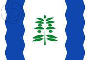 Flag of Cinco Olivas