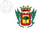 Flag of La Orotava