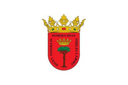 Bandera Tardelcuende