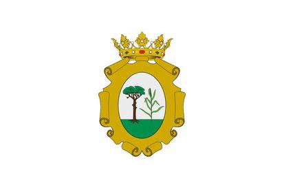 Bandera Picanya