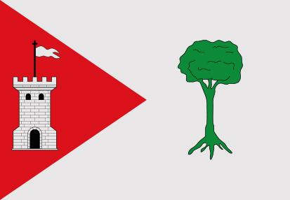 Bandera Pinet
