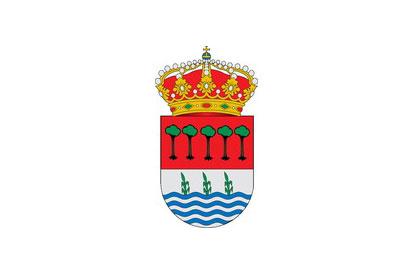 Bandera Laguna de Duero