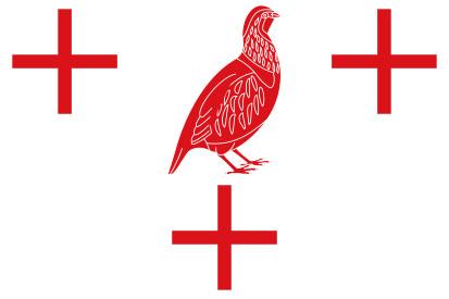 Bandera Perdigón, El