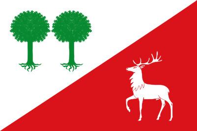 Bandera Robleda-Cervantes