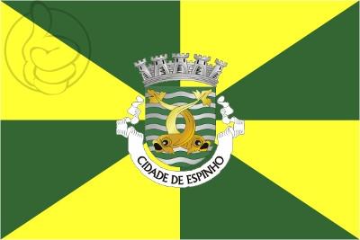 Bandera Espinho