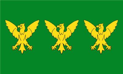 Bandera Caernarfonshire