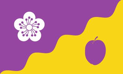 Bandera Flore