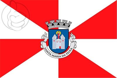 Bandera Santa Maria da Feira