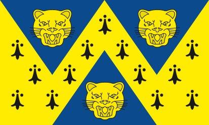 Bandera Shropshire